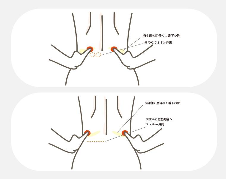 腰痛に効くマッサージ:腎兪(じんゆ)と志室(ししつ)