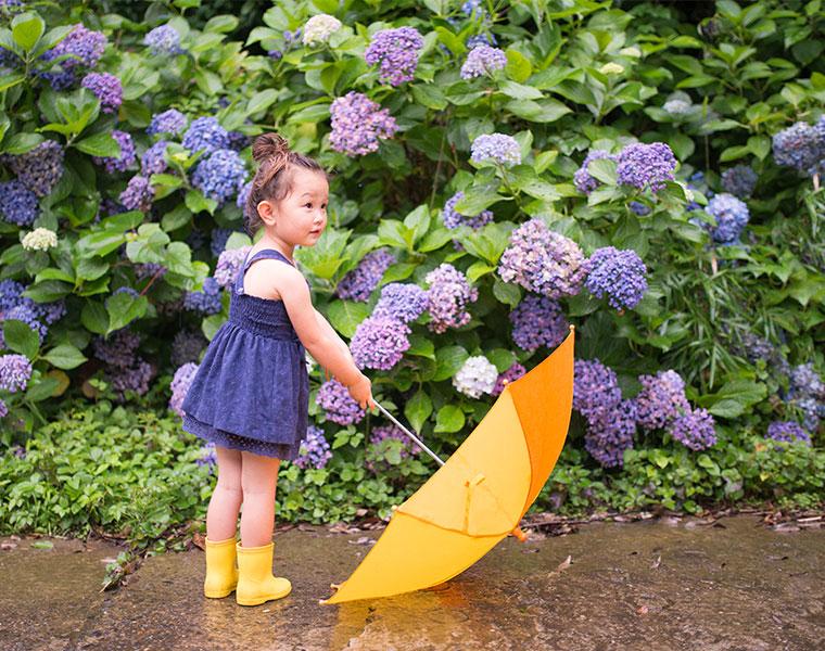 今年の梅雨入り・梅雨明けはいつ?じめじめシーズンを快適に過ごせるお風呂活用術